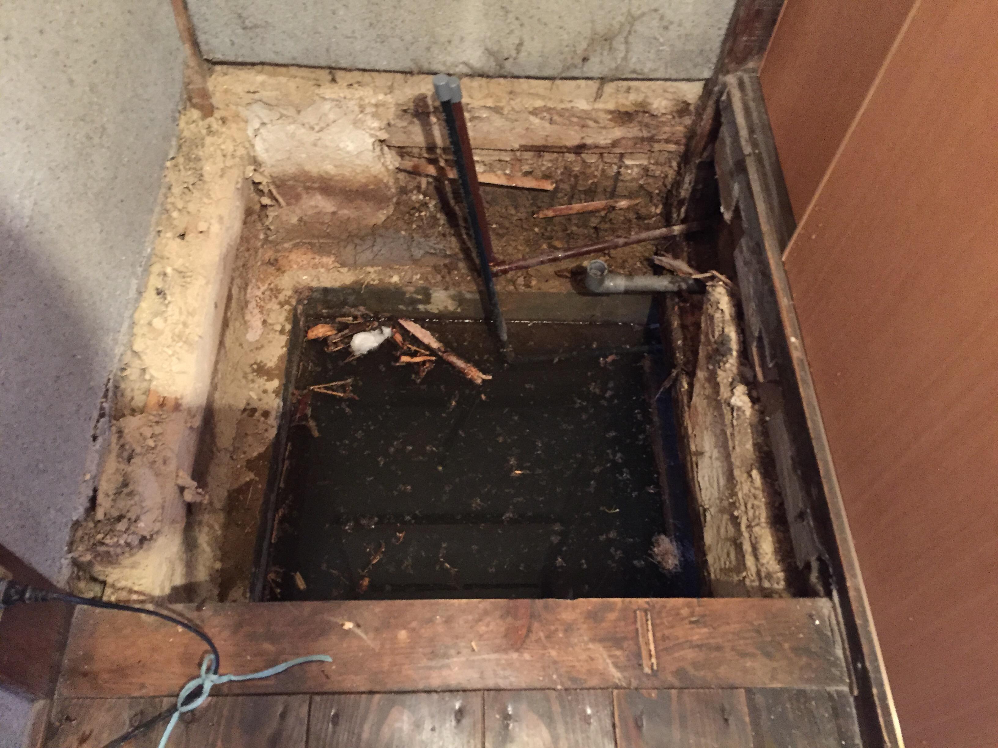 西条市 洗面所 床 リフォーム 施工前3